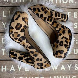 Steve Madden Sarine dyed calf fur leopard heels
